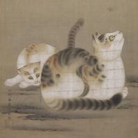 CAT SCROLL